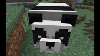 Minecraft realm Showoff