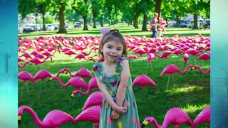 Olmsted Parks Conservancy going for flamingo record in 2022