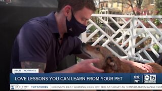 The BULLetin Board: Love lessons from your pet