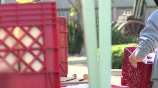 Feeding San Diego helps feed military families