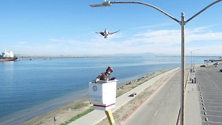 Rescuers scale lamppost to rescue dangling seagull trapped by fishing line and hook