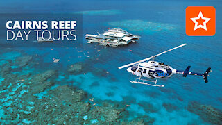 Great Barrier Reef tours from Cairns Australia