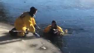 Firefighters rescue dog from icy river in Michigan