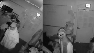 'I've lost faith in police; ' Clothing bank CEO says DPD failed to arrest 3 time burglary suspect