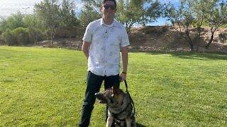 Las Vegas veteran reunites with military dog