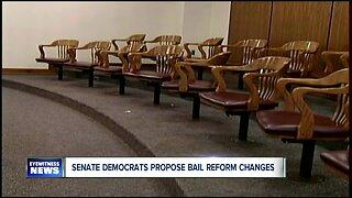 Senate democrats propose changes to current bail laws