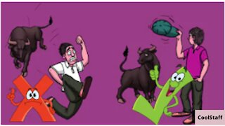 13 Tips How to survive wild animals attacks!!!