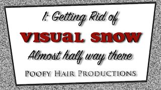 1 Getting rid of Visual Snow. Almost halfway there! 4K. Poofy Hair Productions