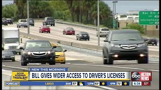 New effort supports undocumented immigrants getting driver's licenses in Florida