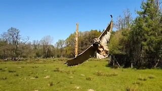 Slow motion footage of eagle owl coming in for a landing