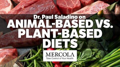 Dr. Paul Saladino- Animal-Based Vs. Plant-Based Diets