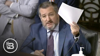 Ted Cruz EXPOSES Biden's ATF Pick for Racist History As Room Goes SILENT