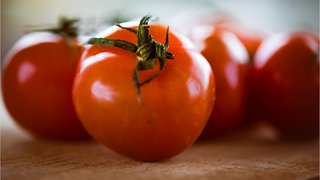 Hunt's Tomato Paste Gets Recall After Customers Find Mold Inside