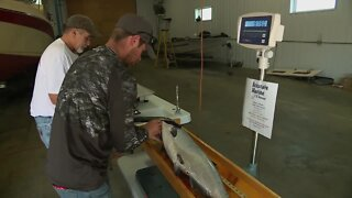Kewaunee/Door County Salmon Tournament begins