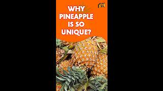 Top 4 Impressive Health Benefits Of Pineapple *