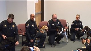 Clark County school police add gun-detecting dogs to force
