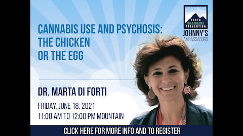 Cannabis Use and Psychosis: The Chicken or the Egg