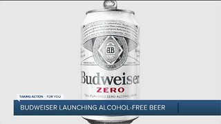 Budweiser launching alcohol-free beer