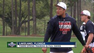 Tigers spring training in full swing