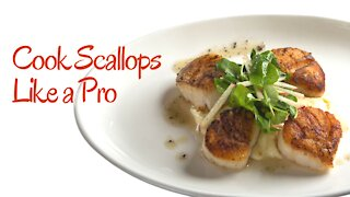 How to cook scallops like a professional chef