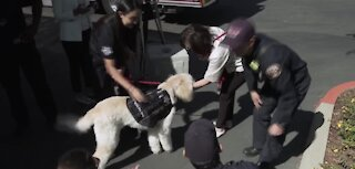 Furry friend for local first responders