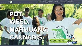 Group pushing to legalize marijuana in Florida