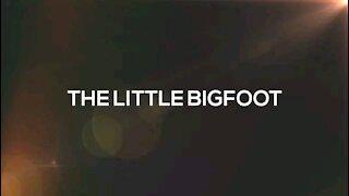 Baby Bigfoot Caught on Video?