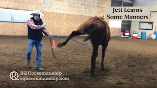 Jett Learns Some Manners