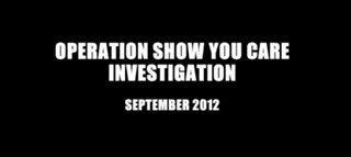 Previous Report: Operation Show You Care investigation part 1