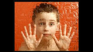 Autism Causes