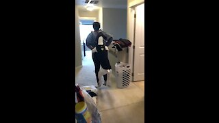 Dancing dog does conga line with owner