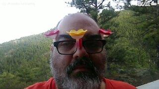 Homem alimenta beija-flores com a própria cabeça