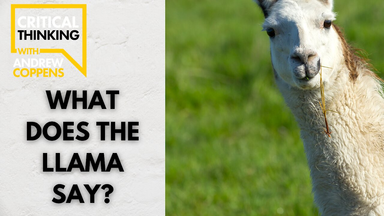 What Does the LLama Say? | 08/25/21