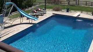 Homeowners in Denver could face fines for renting pool