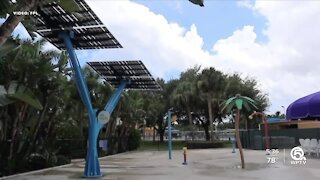 FPL touts solar trees during National Clean Energy Week