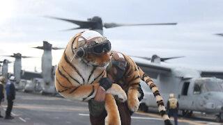 Ospreys take off from USS America