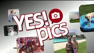 Yes! Pics - 8/28/20
