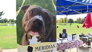 Meridian Canine Rescue Tourney