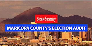 Maricopa County Senate Audit Summary