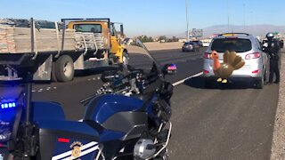 4 Thanksgiving drivers pulled over twice in short time for speeding