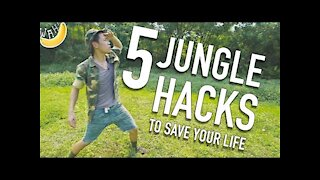 5 Jungle hacks To Save Your Life