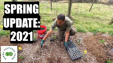 Maximize Your Growing Area // Spring Update 2021