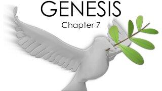 GENESIS CHAPTER 7 - BIBLE STUDY QUIZ
