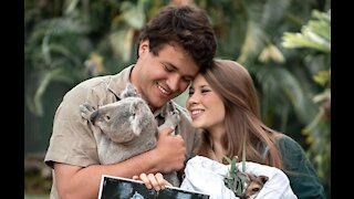 Bindi Irwin gives pregnancy update and shares baby's sonogram