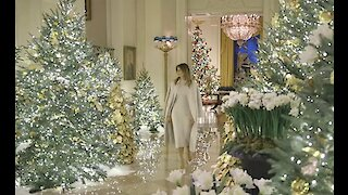First Lady Melania Trump showed off the White House's Christmas display