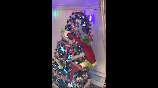 INCREDIBLE Christmas Tree Decorated With The Grinch!