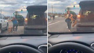 Lady gets out of her car to save stray dogs from traffic
