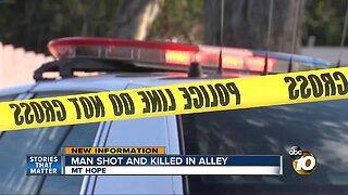 Man killed in Mt Hope