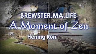 Paine's Creek Herring Run - Brewster.MA.Life
