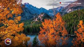 Fall foliage and a bear sighting: Our Colorado through your photos